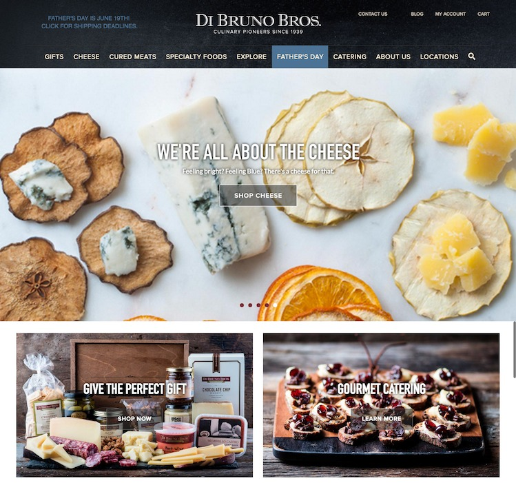 DiBruno website design