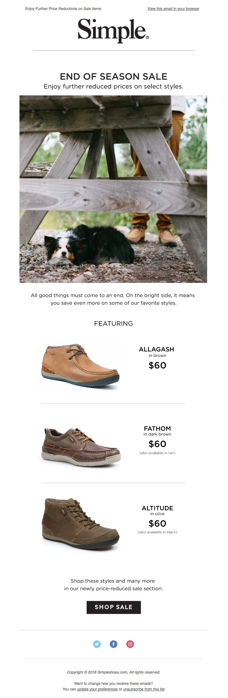 ecommerce-email-marketing-simple-shoes