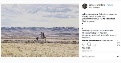 instagram marketing scheens montana