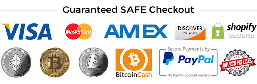 Safe checkout example